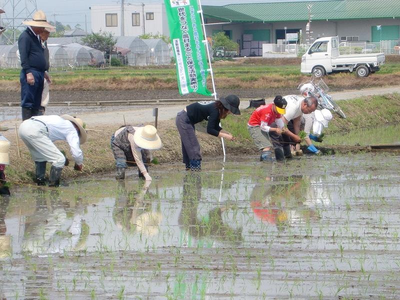 http://marukajiri-yasu.com/event/assets_c/2011/04/CIMG1208-thumb-800x600-513.jpg